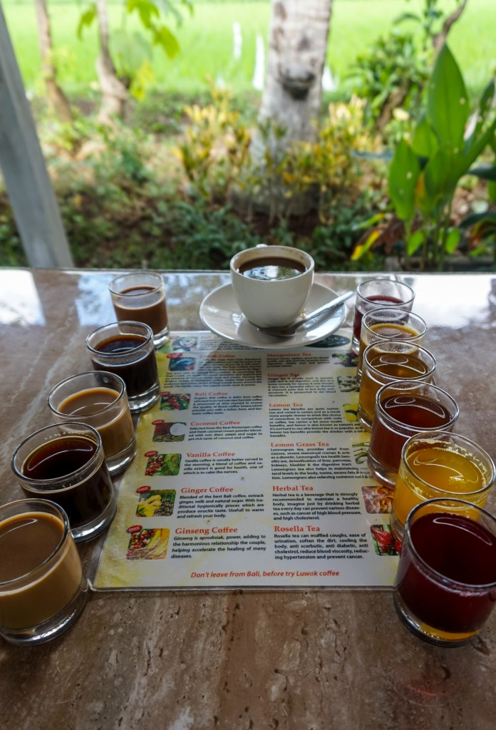 Coffee plantation in Bali, Indonesia serving teas and Luwak coffee