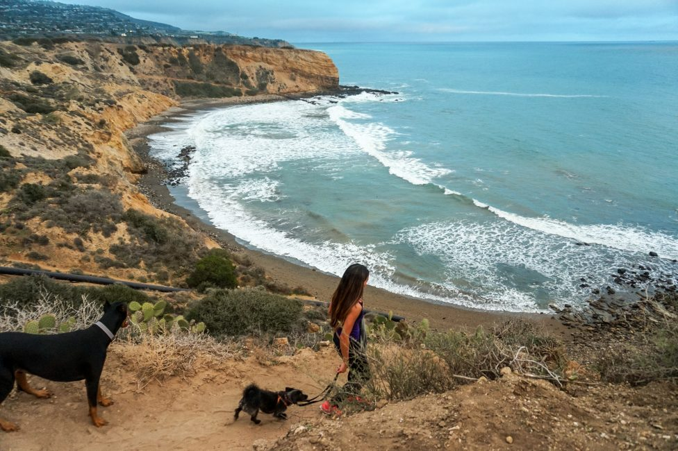 Abalone Cove hike in Palos Verdes, California