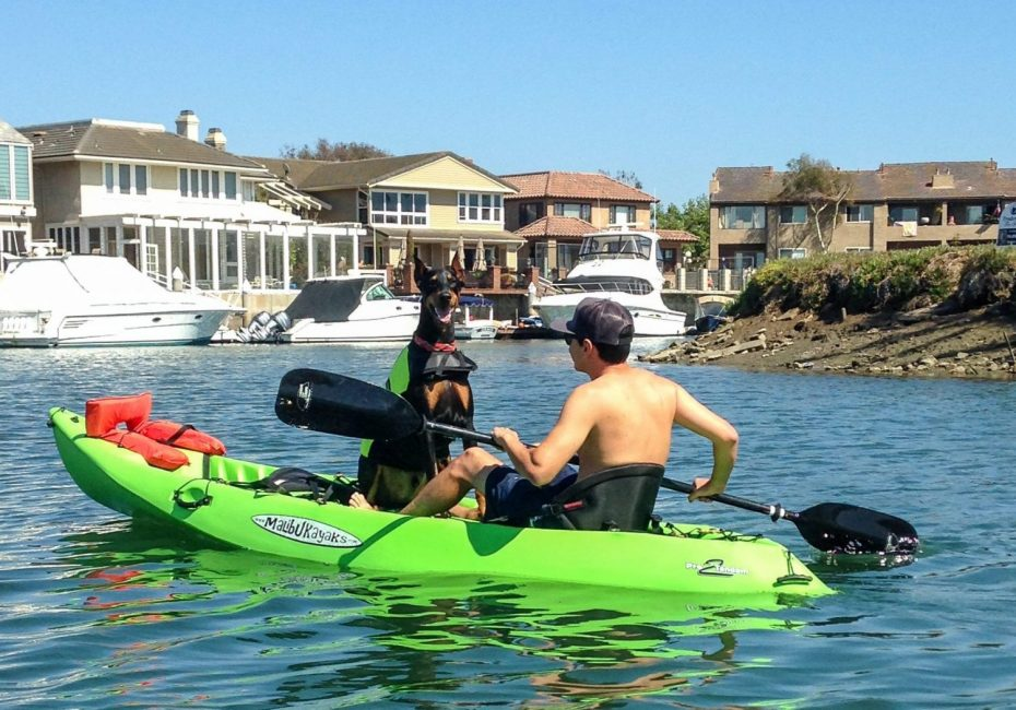 Kayaking In Sunset Beach California
