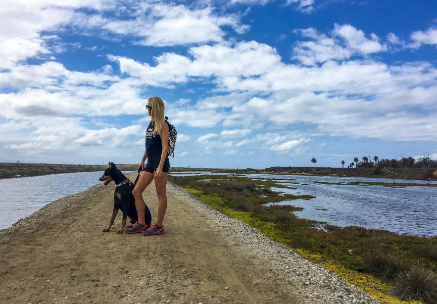 Huntington Beach Wetlands California