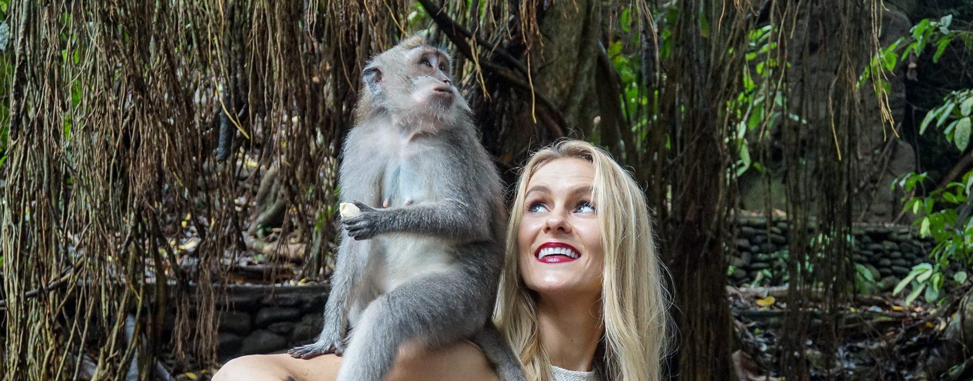 Hasil gambar untuk ubud monkey forest bali