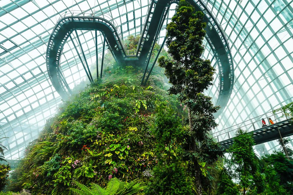 Cloud Forest indoor planetarium Singapore