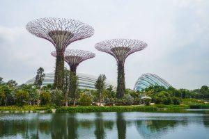 Dragonfly Lake Marina Bay Park Singapore