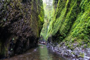 Oneonta Gorge Historic Columbia River Highway Oregon