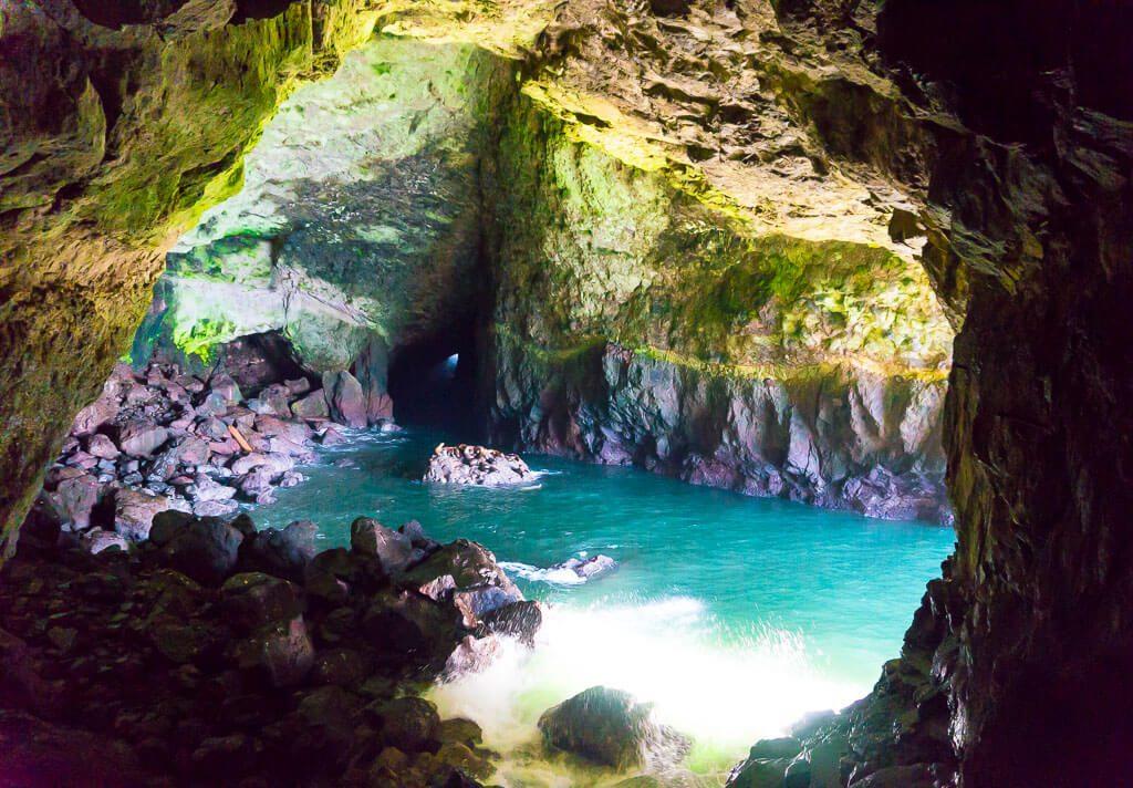 Sea Lions Caves Oregon Coast