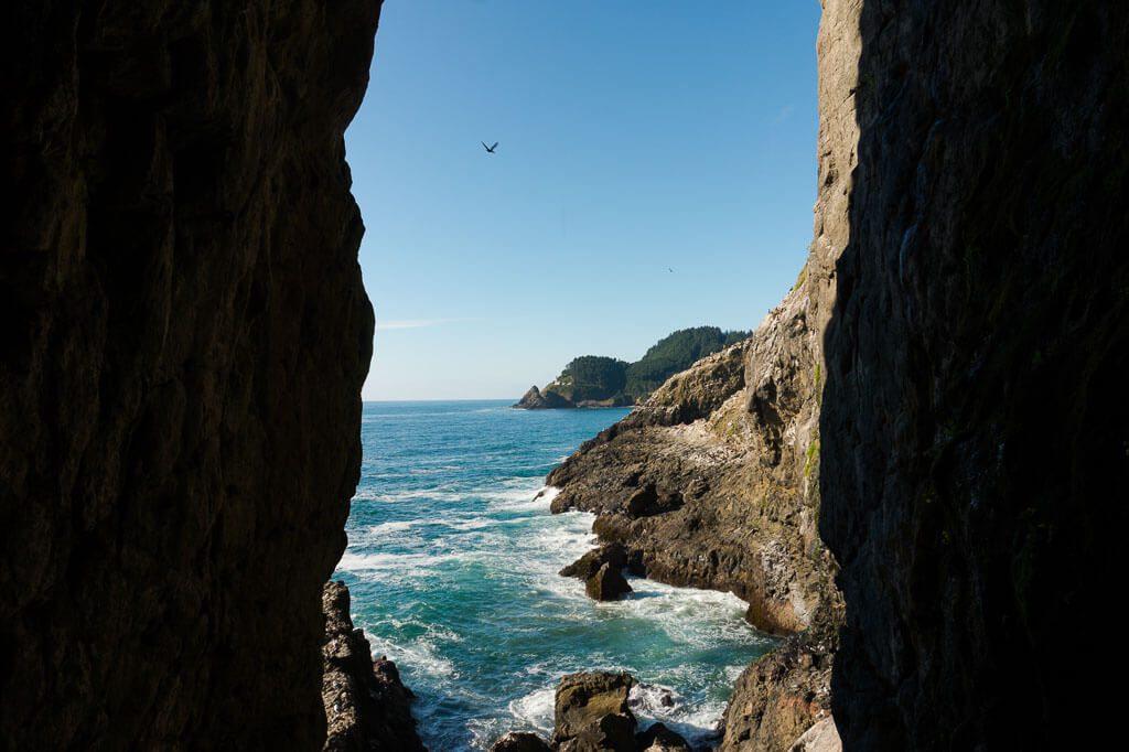Sea Lions Caves in Oregon Coast