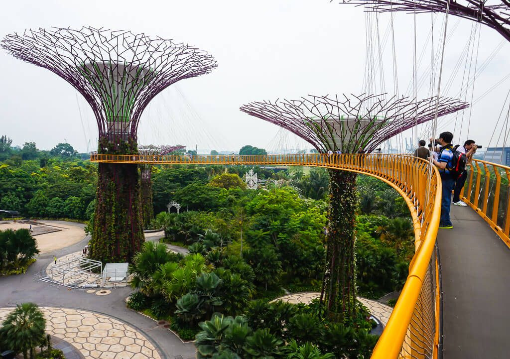 Skywalk by Super Trees Singapore