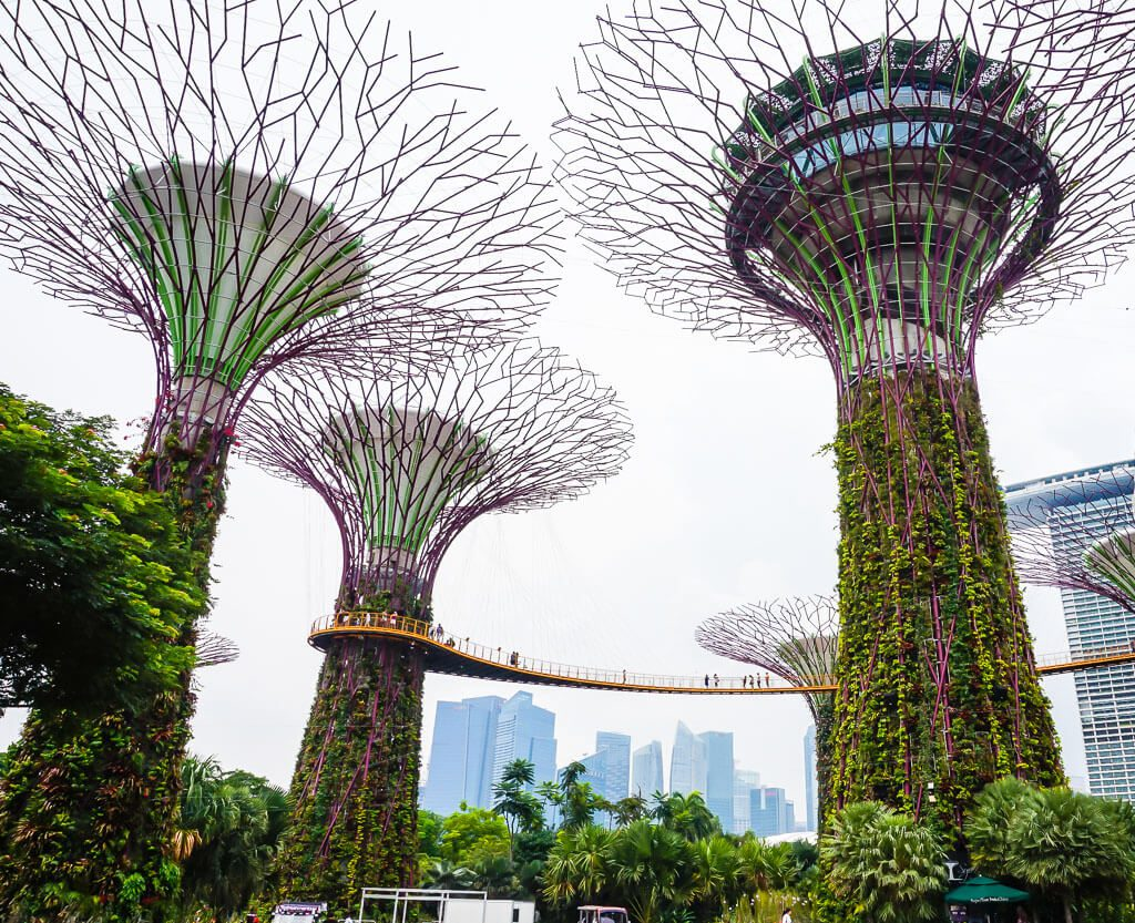 Super Trees in Singapore