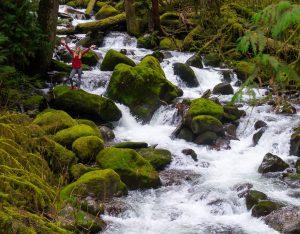 Wakheena Multnomah Trail 420 Historic Columbia River Highway Oregon