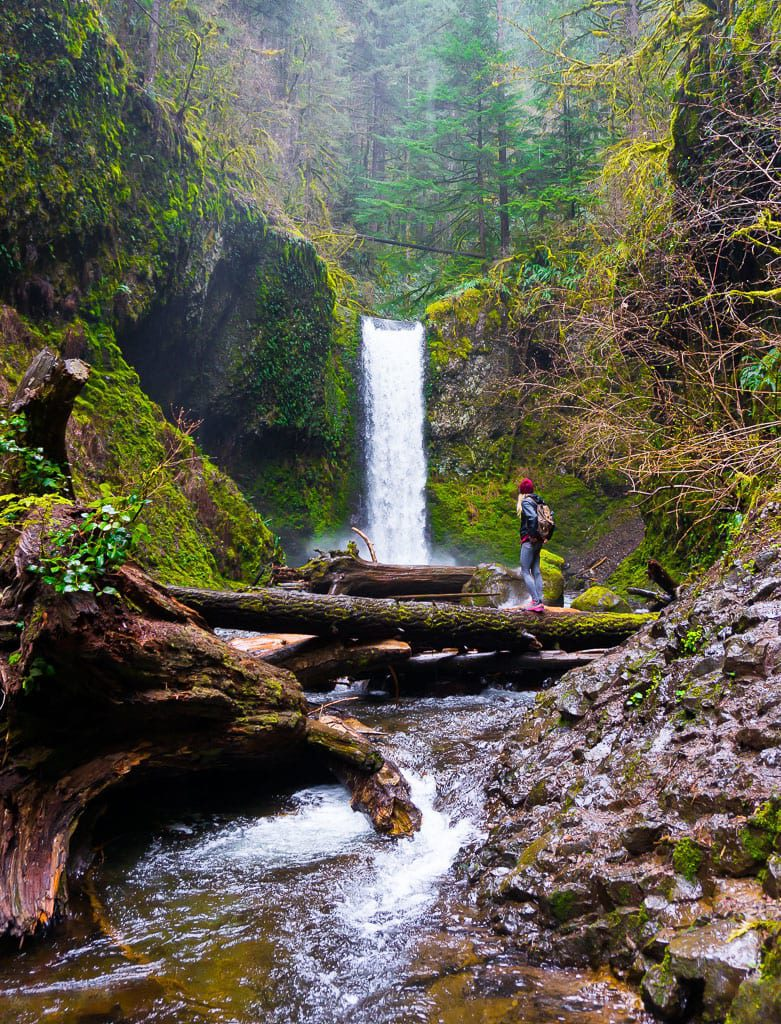 Weisendanger Falls Wakheena Multnomah Trail 420 Oregon