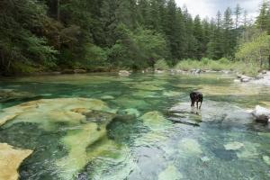 Three Pools by Blue Pools in Oregon