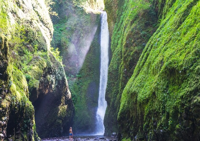 Lower Oneonta Falls Waterfall Hikes In Oregon