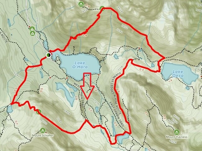 All Trails Lake O'Hara Alpine Circuit Opabin Viewpoint