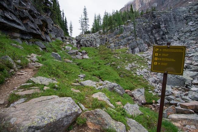 Opabin Plateau Trail Lake O'Hara
