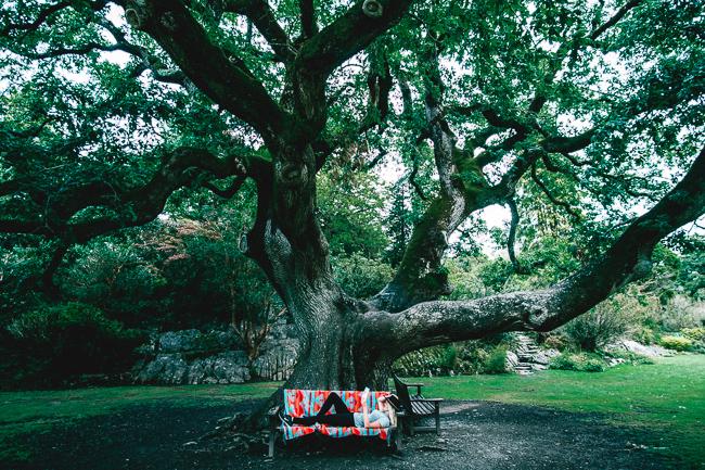 Ireland vacation planning Muckross House Gardens