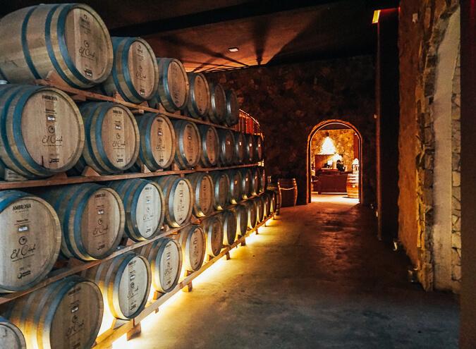 baja california valle de guadalupe wine tasting wine tour mexico