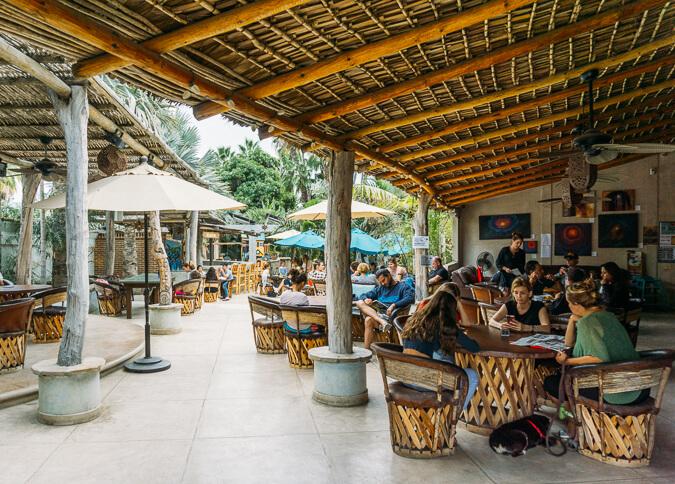 where to go in baja california todos santos restaurants