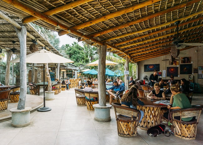 where to go in baja california todos santos restaurants