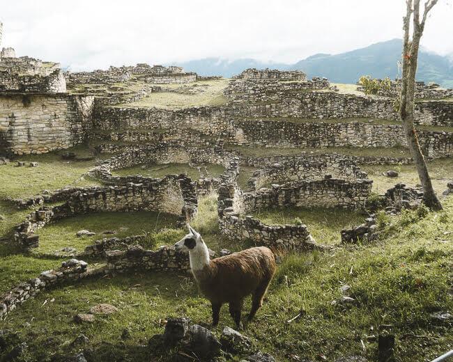 Kuélap Ruins Chachapoya Amazonas North Peru