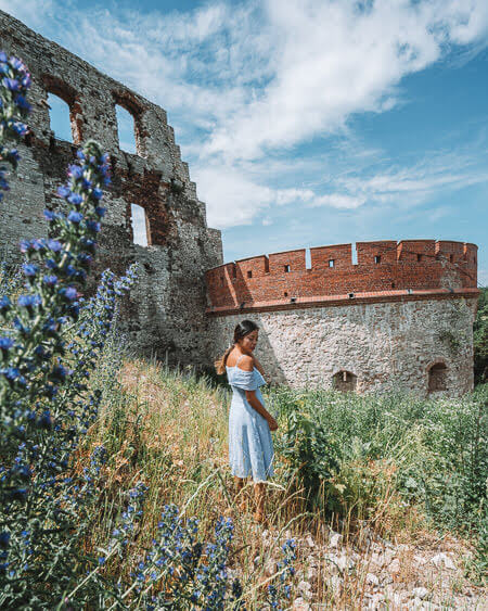 Tenczyn Castle Things To Do In Opole Poland