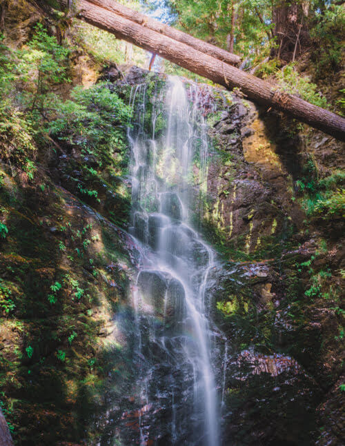 Berry-Creek-Waterfall-Big-Basin-Redwoods-State-Park-California-1