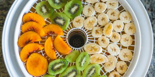 dehydrating-fruit