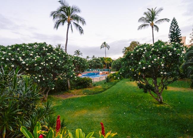 Koa-Resort-Kihei-Maui