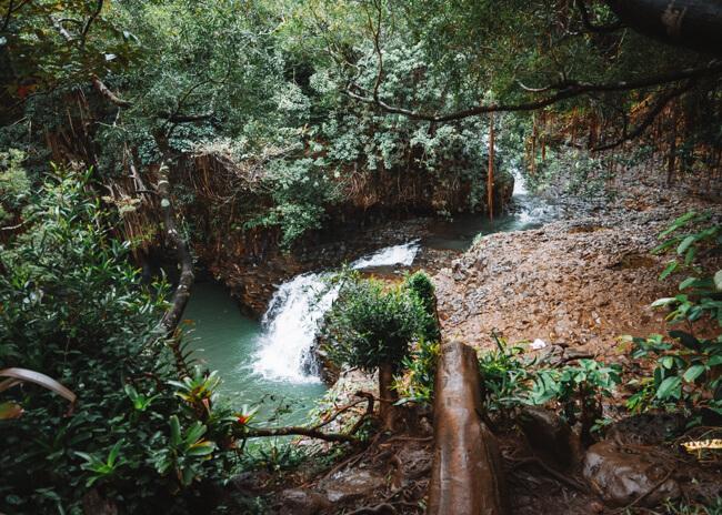 Twin Falls Hike in Maui Hawaii